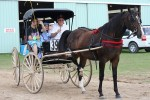Gladwin Carriage Fest 2009
