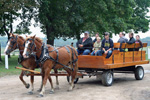 Gladwin Carriage Fest 2011
