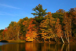Fall Colors - Beaverton and Smallwood Lake 2014